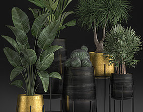 3D Decorative plants in Luxury Gold Pots for the interior