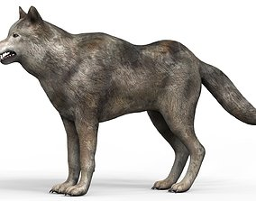 3D asset Low Poly Wolf With PBR Textures