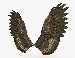 3D Pair of Bird Wings
