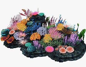 3D model plant Coral