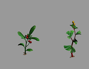 3D Herbal medicine