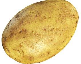 3D model 4k Potato