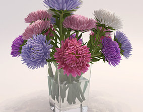 Asters 3D model
