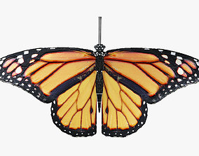3D asset Low-Poly Butterfly - Fully Rigged For Blender
