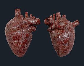 3D asset Heart Human Organ Game Ready 01