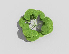 3D model VR / AR ready Plant pot