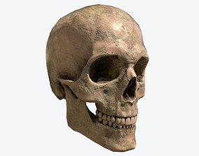 game-ready Human Skull Low-poly 3D model
