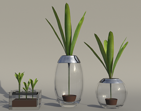 3 Glass Flower Pots 3D