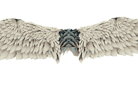 Wing angel 3d model rigged