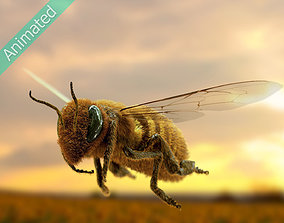 nature Animated bee 3D