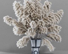 3D model DRIED FLOWERS pampas grass