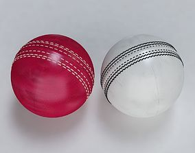 3D Cricket Ball Standard and Warn