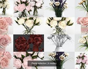 Plants collection 3D model vase