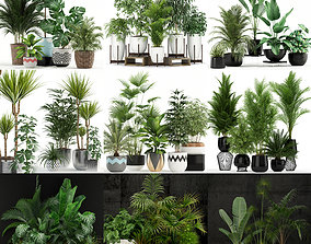 3D Plants collection vol 02