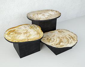 Petrified Wood Slice Coffee Tables 8 3D