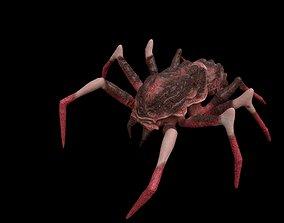 3D model red spider columbias