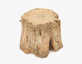 Log Round Big 3D model