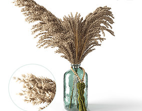 Decorative pampas in a glass jar 3D model
