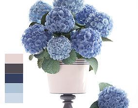 3D Bouquet of blue Hydrangea