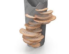 3D model Tinder fungus V2