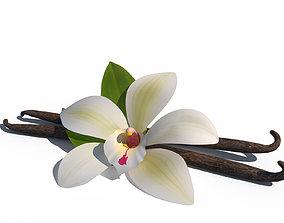 3D Vanilla Flower