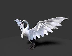 3D white swan
