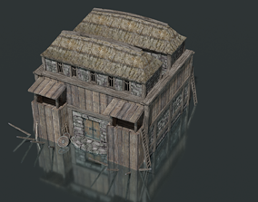 3D asset Nordic Fortress