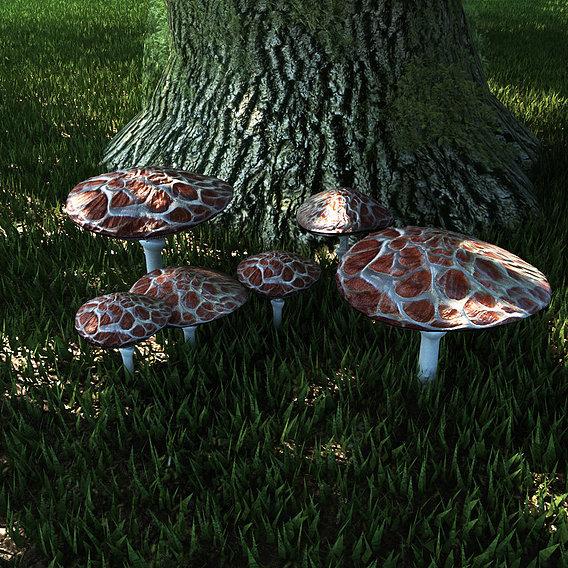 Funguses