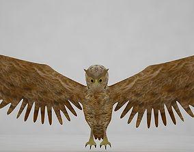 3D horned owl