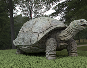 Galapagos Tortoise 3D asset