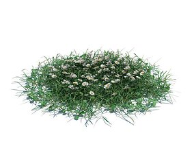 3D Green Grass With Small Flowers