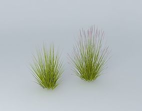3D Two Kinds of grass