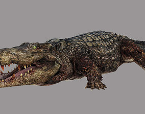 Aligator 3D model
