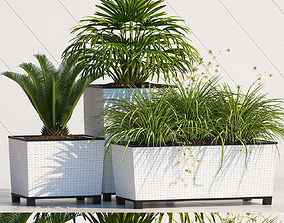 3D model PLANTS 168