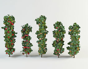 3D model apple tree malus set