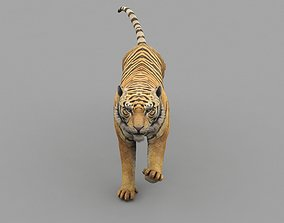 Tiger Animated Game Ready And Vfx 3D asset