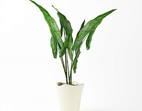Green Leafy Plant With White Vase 3D model