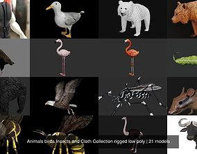3D model Animals birds Insects and Cloth Collection 2
