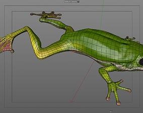 Frog 3d model nature