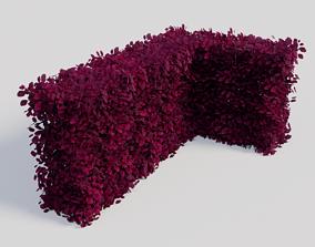 3D disign Fagus sylvatica Atropunicea