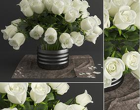 white rose 3D