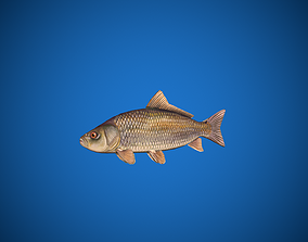 3D asset Oceon Fish