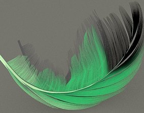 birdie 3D model feather