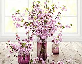 Cherry flowers 3D