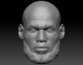 LeBron James 3D Print