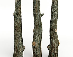 tree trunk 3D model