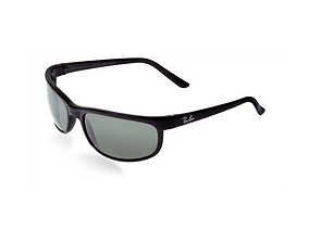 Polarized Sunglasses PREDATOR 3D model