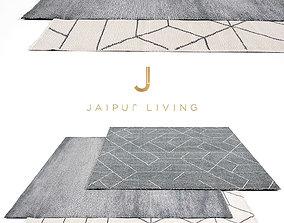 3D Jaipur Living Rug Set 9