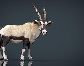 Realistic Oryx 3D asset