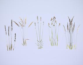 3D asset Cereals set lowpoly